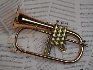 Výrobce hudebních nástrojů Amati Denak jde do prodeje