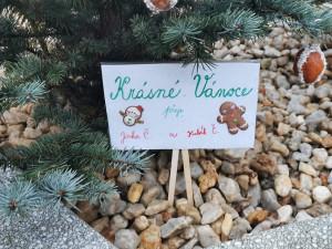 Lidé v Chebu mohou přispět k vánoční výzdobě města