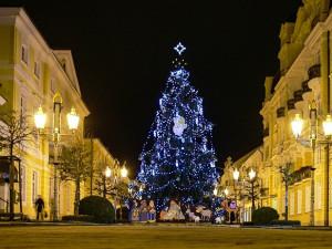 Tradiční rozsvícení vánočního stromu mohou lidé sledovat on-line