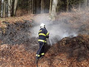 Každý den zasahují hasiči minimálně u jednoho požáru lesního porostu či trávy
