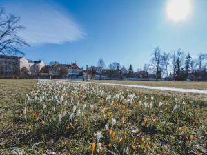 Téměř letní teploty vystřídá v Česku zima. O víkendu může sněžit