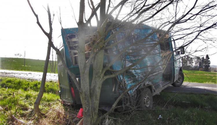 Opilý řidič se zákazem řízení ujížděl před policisty a havaroval