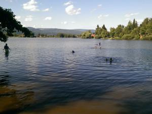 Hygienici v Karlovarském kraji zakázali koupání ve Velkém rybníku u Hroznětína